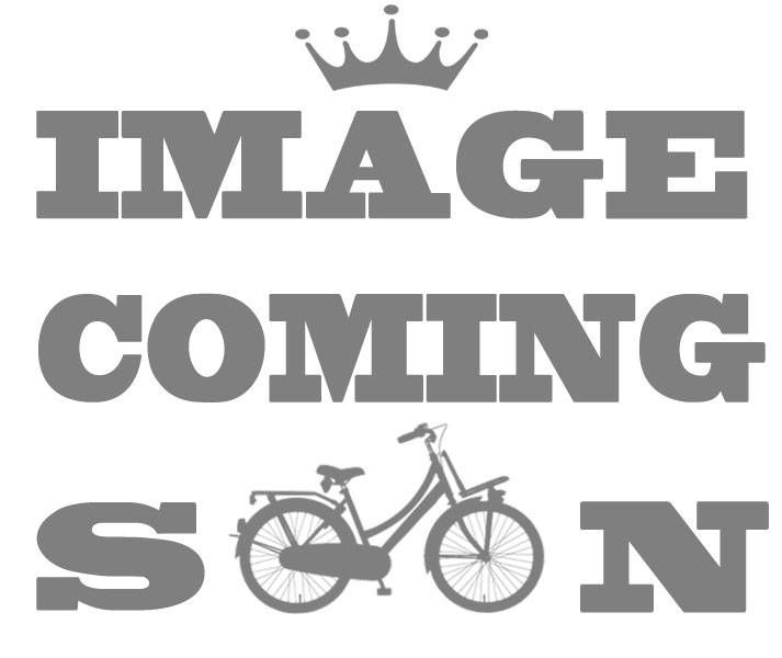Gazelle Chainring JIS 38 Teeth