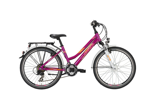 Prince Rocky FG / ND Girls Bicycle 20 Inch 30cm 7S - Purpl
