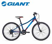 Giant Children's Bicycle 24 Inch
