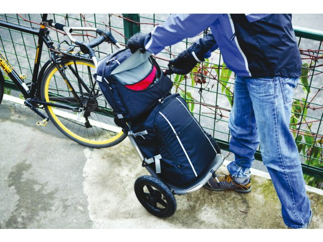 Burley Bicycle Trailer Travoy