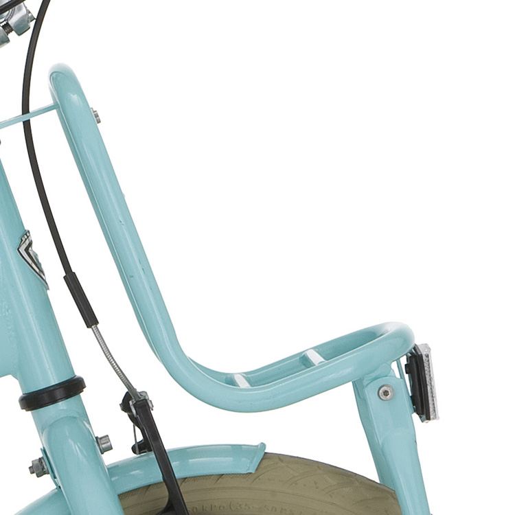 Alpina Front Carrier 16 Inch Clubb - Mint Blue