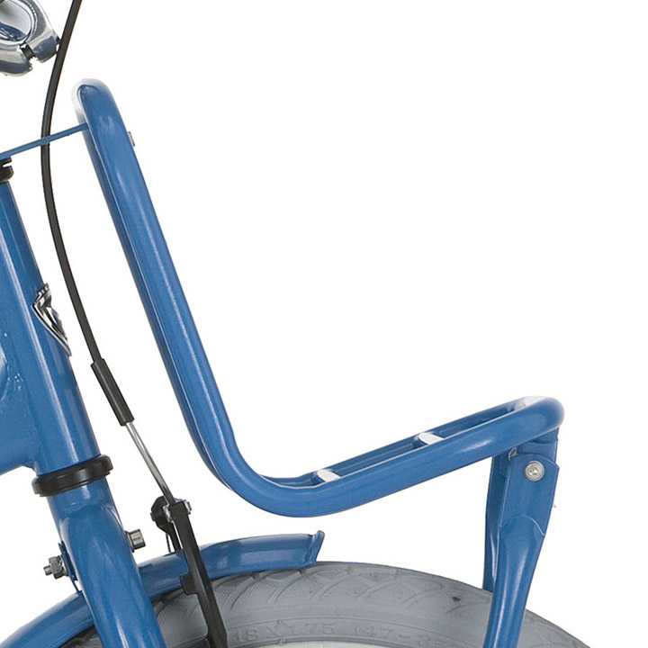 Alpina Front Carrier Clubb 16 Inch - Blue