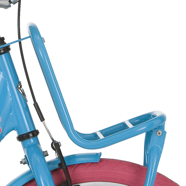 Alpina Front Carrier Clubb 16 Inch - Turquoise