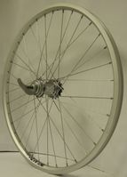 Golden Lion Rear Wheel 24 Inch 2010/2011 - Silver