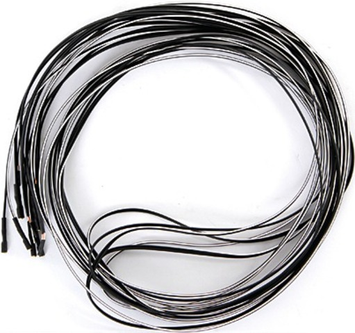 Busch & Müller Light Cable 2-Wire with 1 Plug 210cm