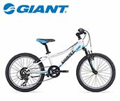 Giant Boy's Bicycle 20 Inch